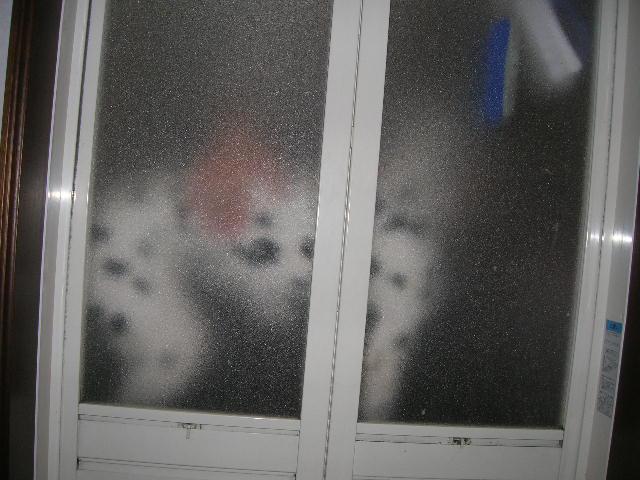 DSCN3813.jpg