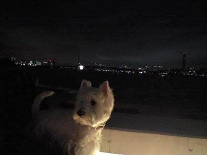 夜景①.JPG