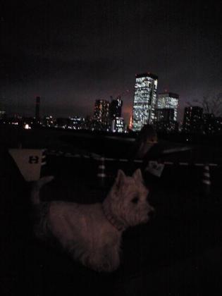 夜景②.JPG