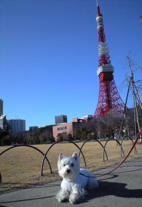 タワー①.jpg