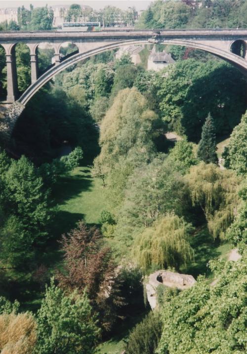 陸橋の景色_convert_20110727155625
