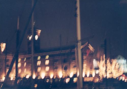夜のドッグランド