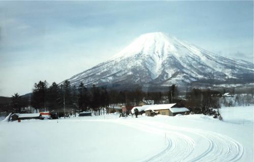 ニセコ富士