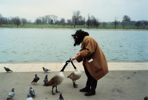 鳥に餌を_convert_20120226160508