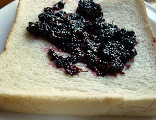 桑の実とパン