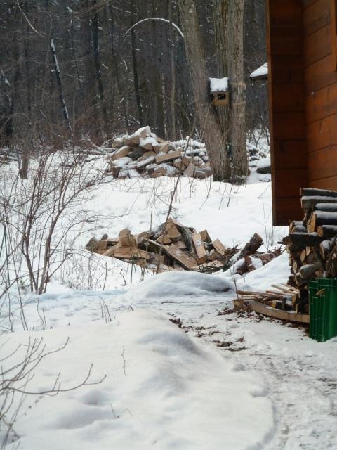 薪小屋から薪山を見る