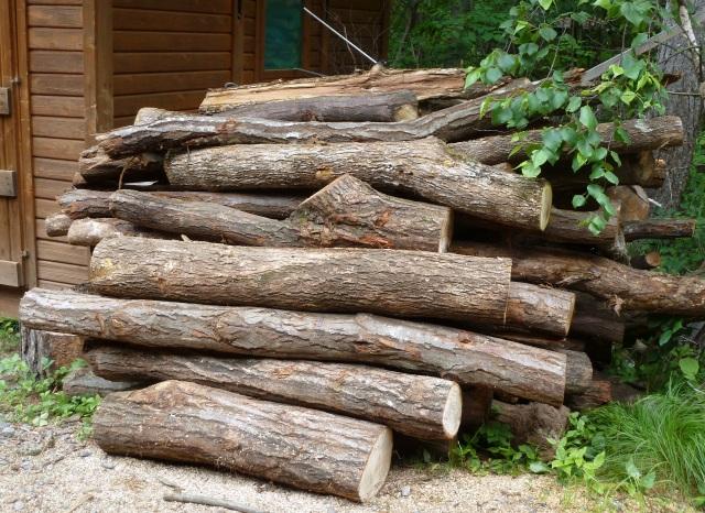 薪になる原木