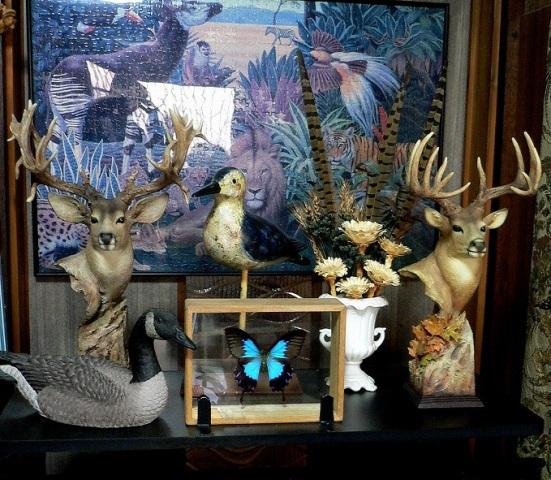 飾り棚の動物たち