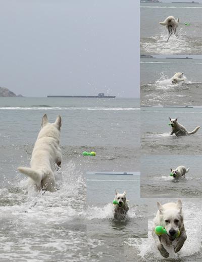 ブランカ泳法習得
