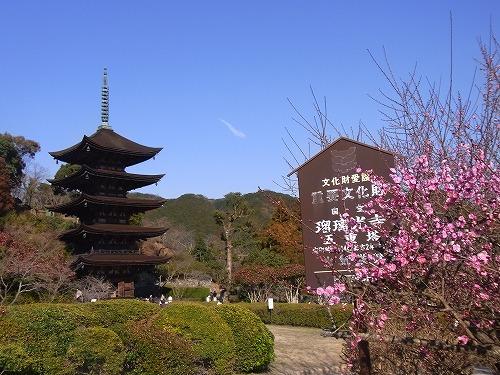 akiyosidai2011 146