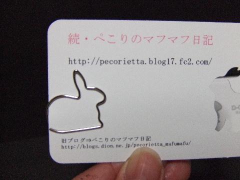 2009_03050006.jpg