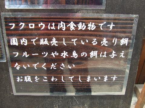 2009_03290069.jpg