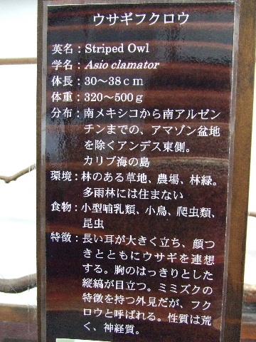 2009_03290196.jpg