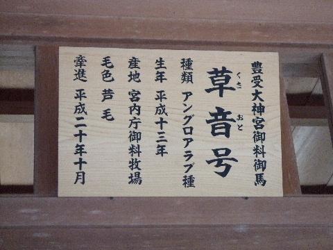 2009_04130011.jpg