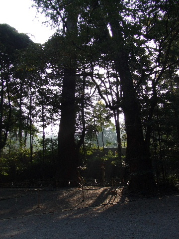 2009_04130100.jpg