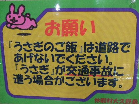 2009_05190216.jpg