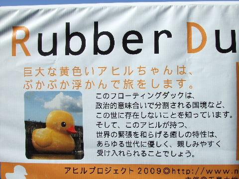 2009_09200053.jpg
