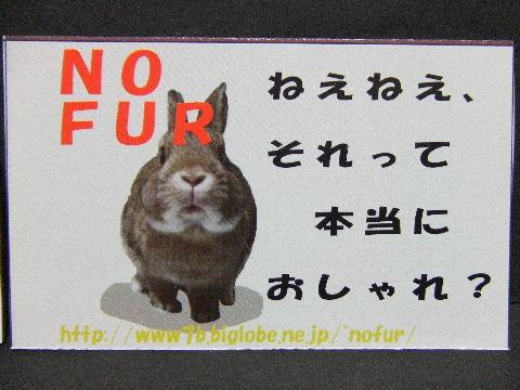 2009_09230008.jpg