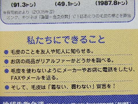 2009_09230013.jpg