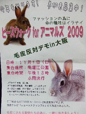 2009_09230015.jpg