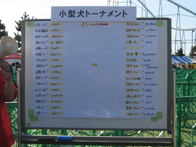 inurin 2008 (22)