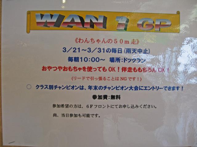 wan para  (7)
