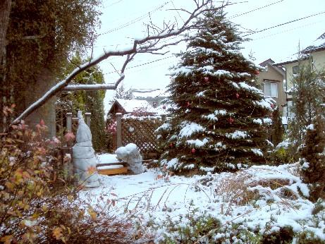 フロントガーデン・雪