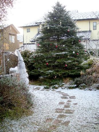 ホワイトツリー1