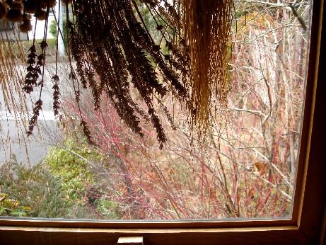 シェッド窓