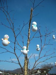 雪だるまが咲いて