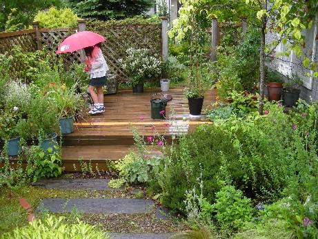 雨の日ガーデン2