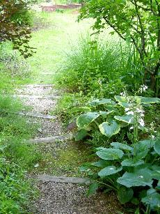 ガーデン内の小道