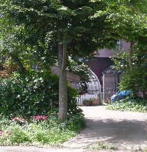 農家の庭先2