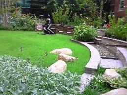my-garden 6