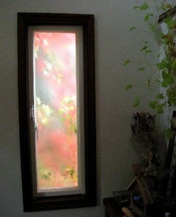 窓枠がスクリーン