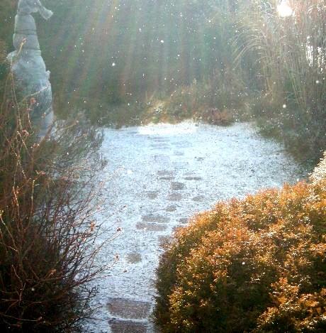 舞い降りる雪3