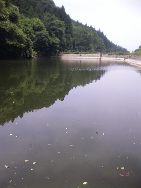 Sの大池減水です