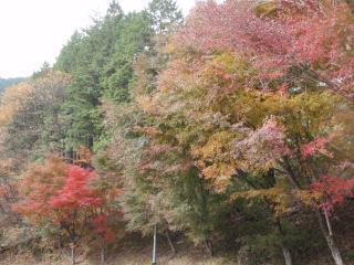 ふたご山02