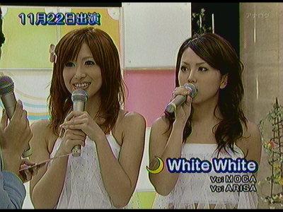 WhiteWhite。