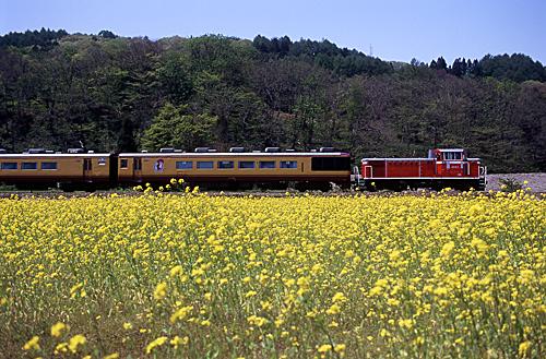 spring-004.jpg