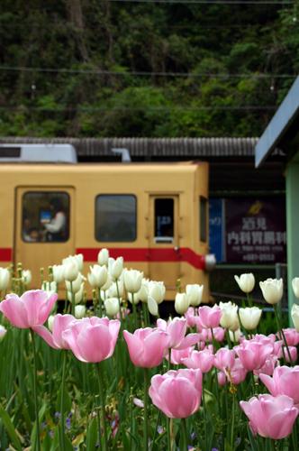 spring_012.jpg