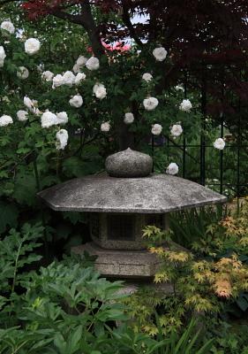 garden1022