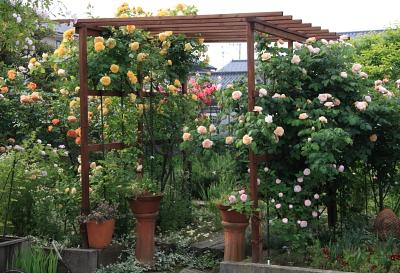 garden1024