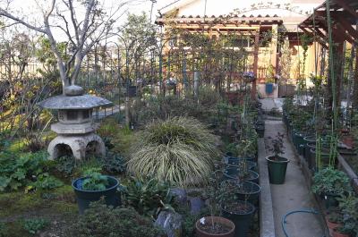 garden1027