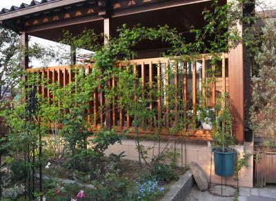 garden1034