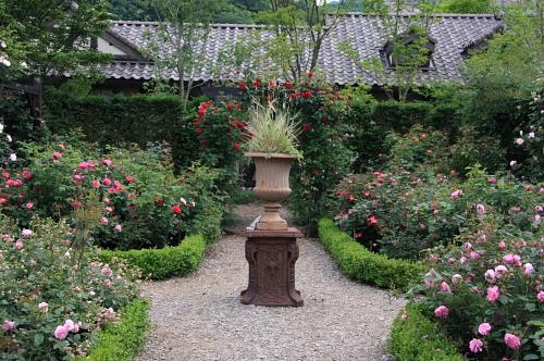 garden1116