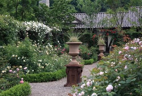 garden1118