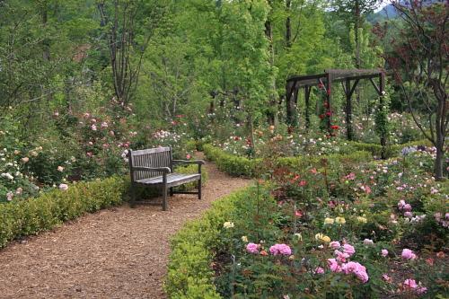garden1121