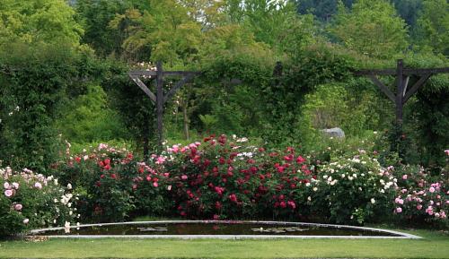 garden1122