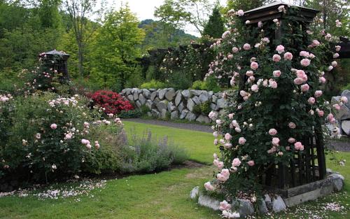 garden1146